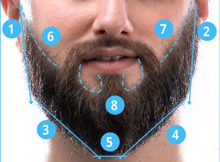 Draw lines to trim beard